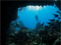 Diving in Dominica